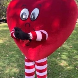 NSW and ACT Happy Hearts